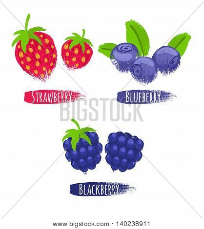 Assorted berries set vector illustration. Painted hand drawn sketch texture. Sweet juicy strawberry blueberry bilberry blackberry isolated on white background.