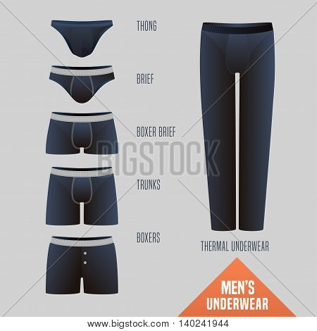 Men's underwear collection vector illustration. Set design elements of different models of male underwear - boxers slip boxer brief bikini trunks thong thermal for retail shop
