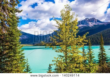 Magic Emerald Lake in the Canadian Rockies. The emerald-green lake surrounded by a coniferous forest
