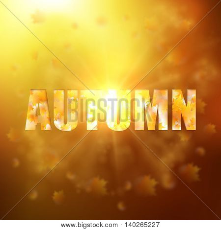 Autumn background with gold maple leaves and bokeh lights with sunny sky, fall vector illustration.