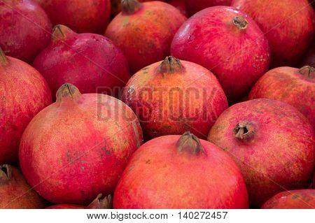 pomegranate grenadine fruit - pile of pomegranates poster