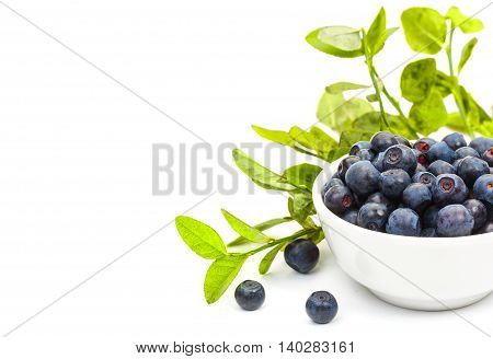 Ripe Fresh Blueberries In A Small White Ceramic Bowl, Isolated On White Background And An Empty Plac