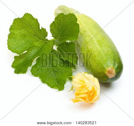Vegetable Marrow Squash Zucchini With Flower And Green Leaves Isolated On A White