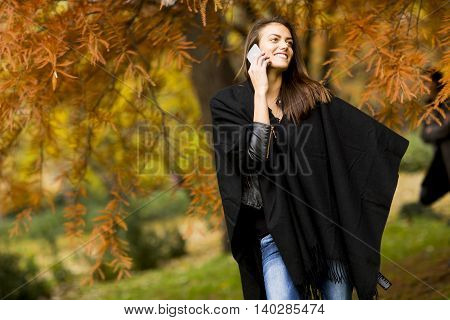 Young Woman In Autumn Park