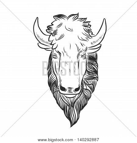Bison Mascot Head.Buffalo Head Animal Symbol.Engrave isolated vector.Hand Drawn Graphic.Isolated on white background.Great for Badge Label Sign Icon Logo Design.Quality Americana Bison Emblem.