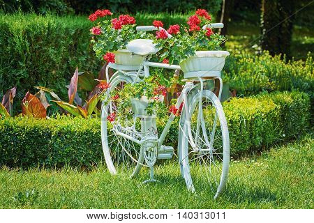 Old White Bicycle with Flowers on the Grass