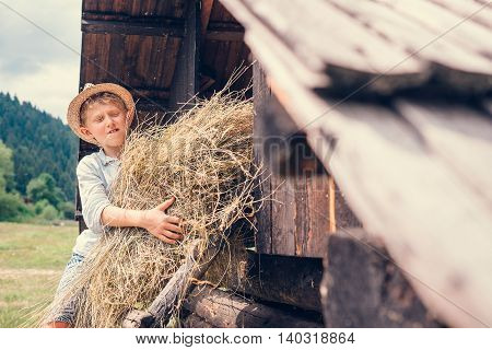 Boy puts the hay in hayloft laboriously