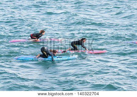 Tauranga November 5, 2012: Three young women on paddle boards paddling across Tauranga harbour