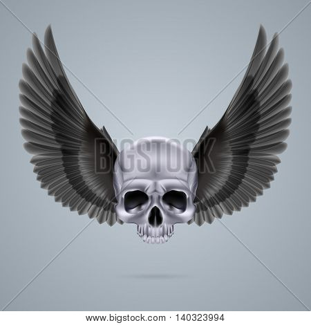 Metal chrome skull with two black crow wings and no jaw bone.