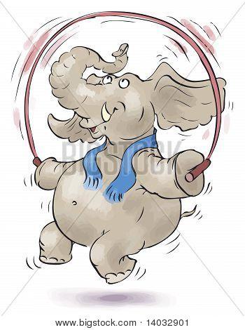 Jumping Elephant