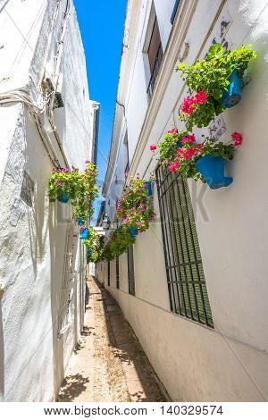 Calleja de las Flores in Barrio de la Juderia of Cordoba, Andalusia, Spain.