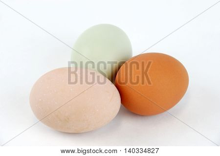 different color chicken eggs on white background