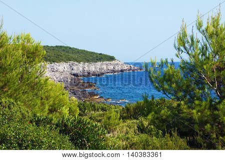 A deserted Adriatic coast with Mediterranean greenery poster