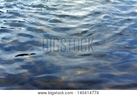 Abstract Water In The Lake Surface.