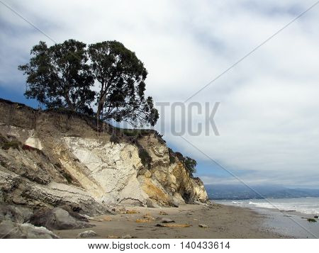 Waves lap on the beach next to cliff with tree on top in Santa Barbara California.