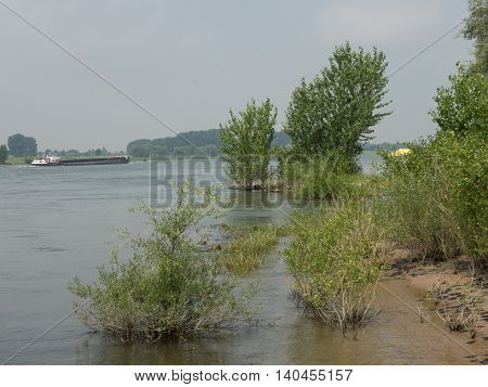 the lower rhine near the City of rees