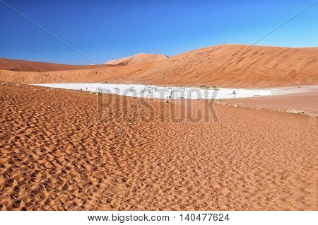 View of Deadvlei in early morning. Deadvlei is a white clay pan located near the more famous salt pan of Sossusvlei, inside the Namib-Naukluft Park in Namibia.