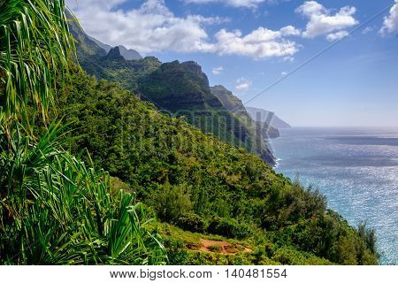 Landscape View Of Na Pali Coastline And Forest On Kalalau Trail, Kauai