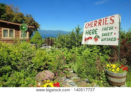 Sign advertising cherries for sale at a cherry orchard with Flathead Lake in the background