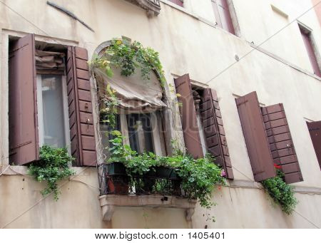 Flower Box In Venice