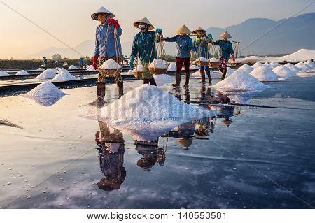 Hon Khoi field, Khanh Hoa, Vietnam - March 18, 2016 - Salt makers harvest salt in Hon Khoi fields