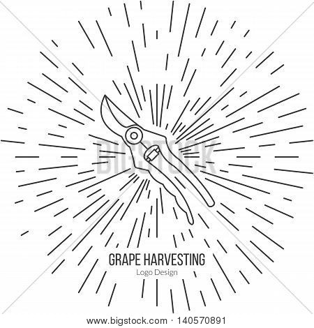 Grape picking trimming snips with star burst. Single logo in modern thin line style isolated on white background. Outline winery symbol. Simple mono linear pictogram. Stroke vector logotype template.