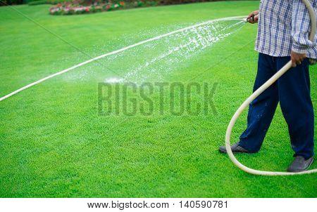 young man watering backyard lawn using hosepipe