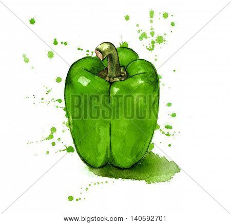 Green pepper painted in a splashy watercolour style