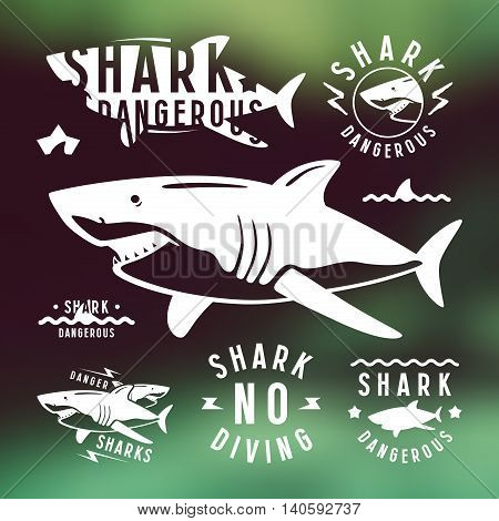 Shark dangerous emblems labels and design elements. White print on blurred background