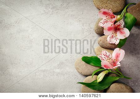 Spa background with flowers and stones, view from above