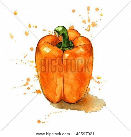 Orange pepper painted in a splashy watercolour style