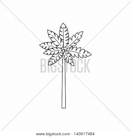 Palm woody plant icon in outline style isolated on white background. Trees symbol