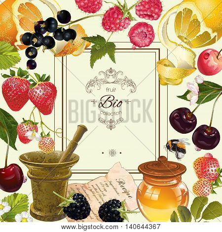 Vector vintage fruit and berry frame. Design for vegeterian menu, tea, ice cream, juice, jam, natural cosmetics, candy and bakery with fruit filling, health care products. With place or text