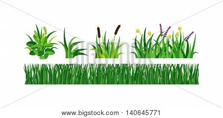 Green grass with earth crosscut. Ground dirt spring garden texture concept grow agriculture.