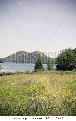 Toned image of the Bubbles Mountain Peaks in Acadia National Park.