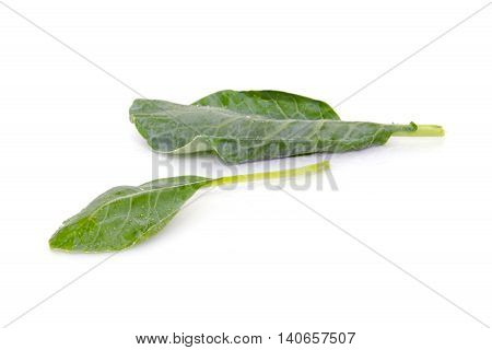 Chinese Kale Or Chinese Broccoli Vegetable Isolated On White Background