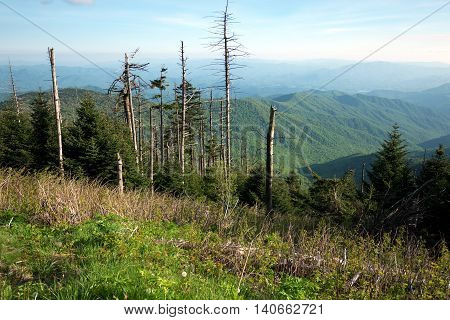 Smoky Mountains panorama from Clingmans Dome, in Great Smoky Mountains National Park, Tennessee