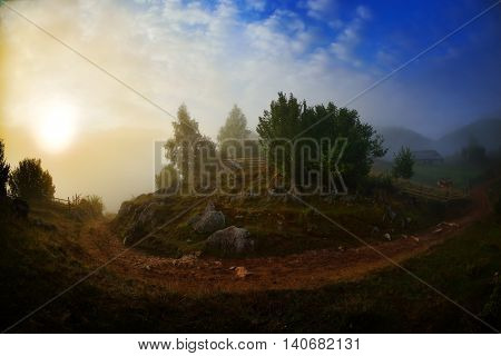 mountain landscape in summer morning, Fundatura Ponorului, Hunedoara county,  Romania