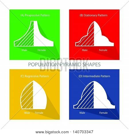 Population and Demography Illustration Set of Four Types of Population Pyramids Chart or Age Structure Graph.
