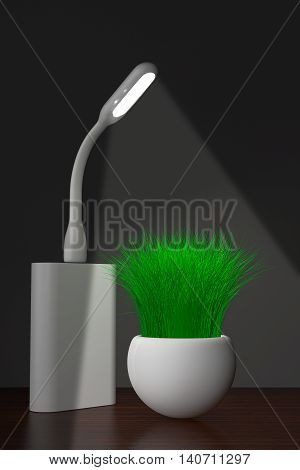 Led USB Lamp with Powerbank and Grass in Planter on a white background. 3d Rendering