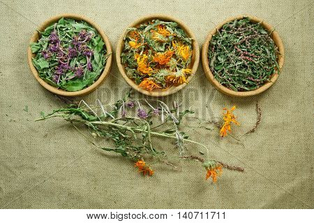 Dried herbs for use in alternative medicine.Herbal medicine phytotherapy medicinal herbs.For preparation of infusions decoctions tinctures powders ointments tea. Background green cloth