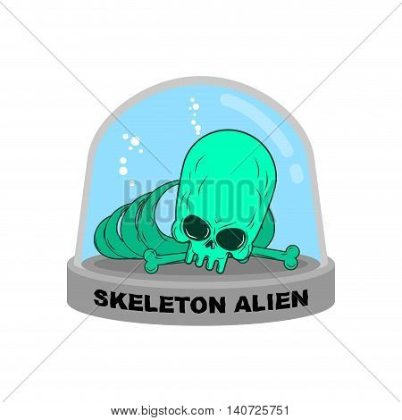 Skeleton Alien In Glass Bell. Bones Ufo Research. Skull Alien Humanoid Laboratory Flask. Glass Bank