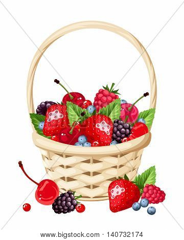 Vector woven basket with strawberries, raspberries, cherries, blackberries and blueberries isolated on a white background.