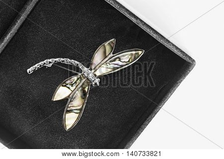 Dragonfly nacre brooch in black jewel box closeup