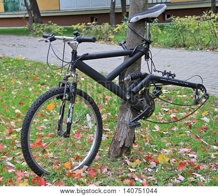 Bicycle abandoned outdoor, dismounted wheel. Bike without wheel attached to a tree