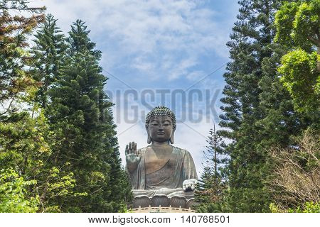 Tian Tan Buddha and trees as foreground in sunny day with bright blue sky.