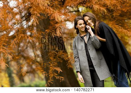 Young Women With Mobile Phone In The Autumn Forest