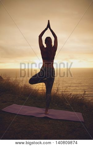 Female Doing Tree Pose Yoga On The Cliff