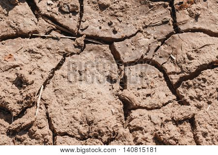 Cracks in the dried soil in arid season / Desertification