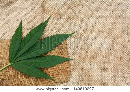 Patching burlap with a marijuana leaf in the corner